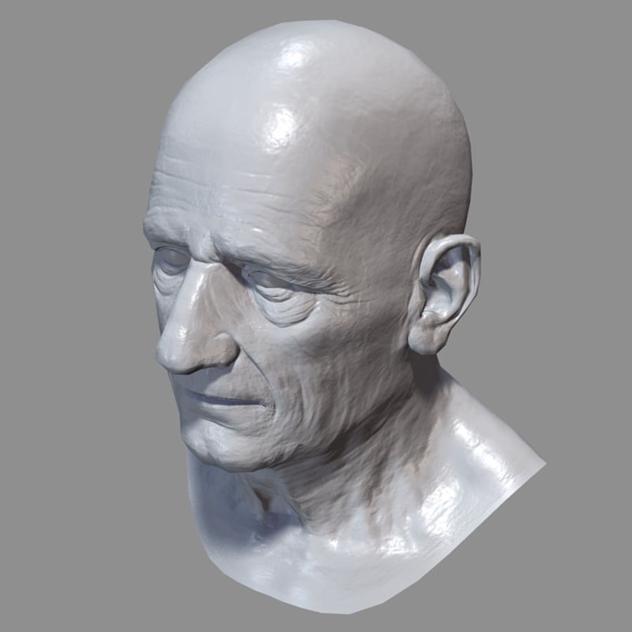 Old Man - Head royalty-free 3d model - Preview no. 24