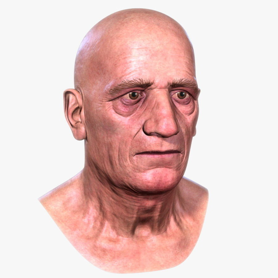 Old Man - Head royalty-free 3d model - Preview no. 1
