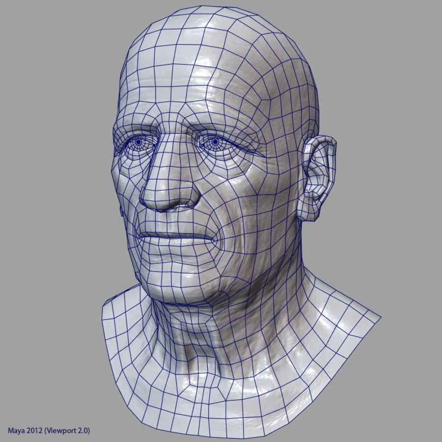 Old Man - Head royalty-free 3d model - Preview no. 26