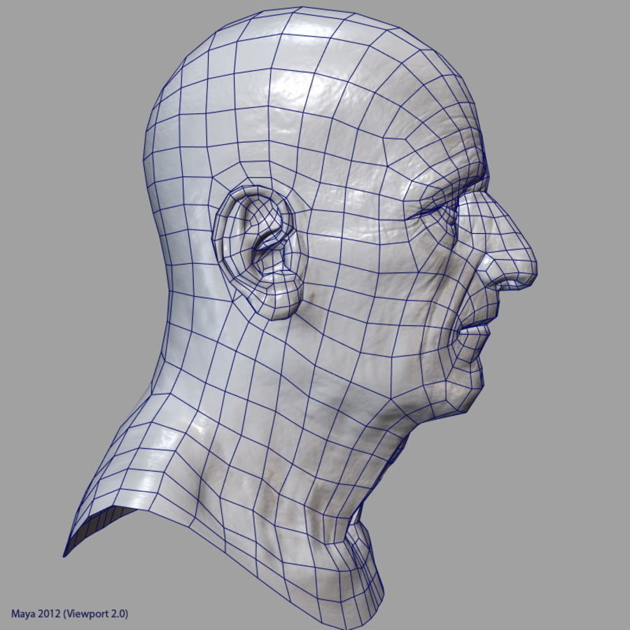 Old Man - Head royalty-free 3d model - Preview no. 29