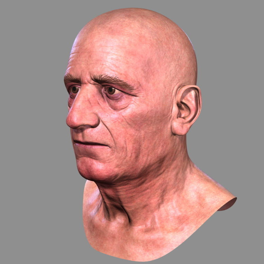 Old Man - Head royalty-free 3d model - Preview no. 5