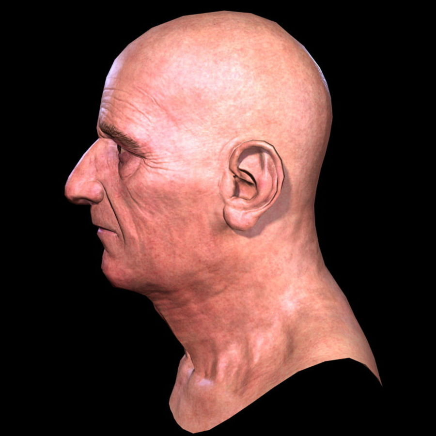 Old Man - Head royalty-free 3d model - Preview no. 14