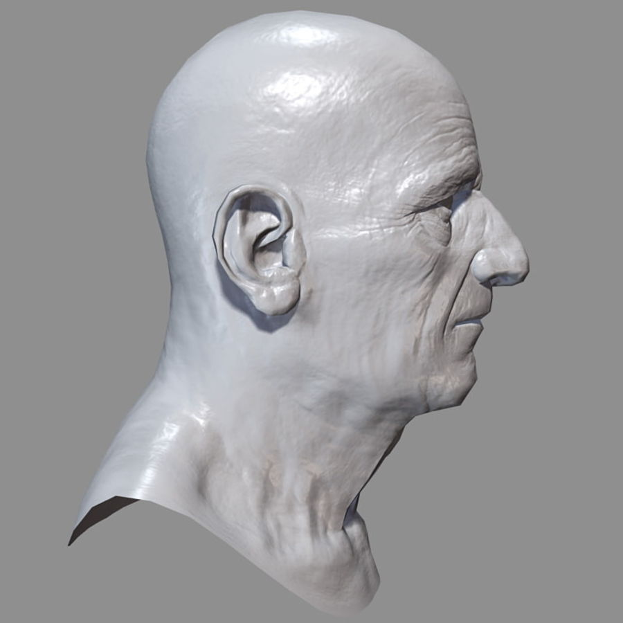 Old Man - Head royalty-free 3d model - Preview no. 22