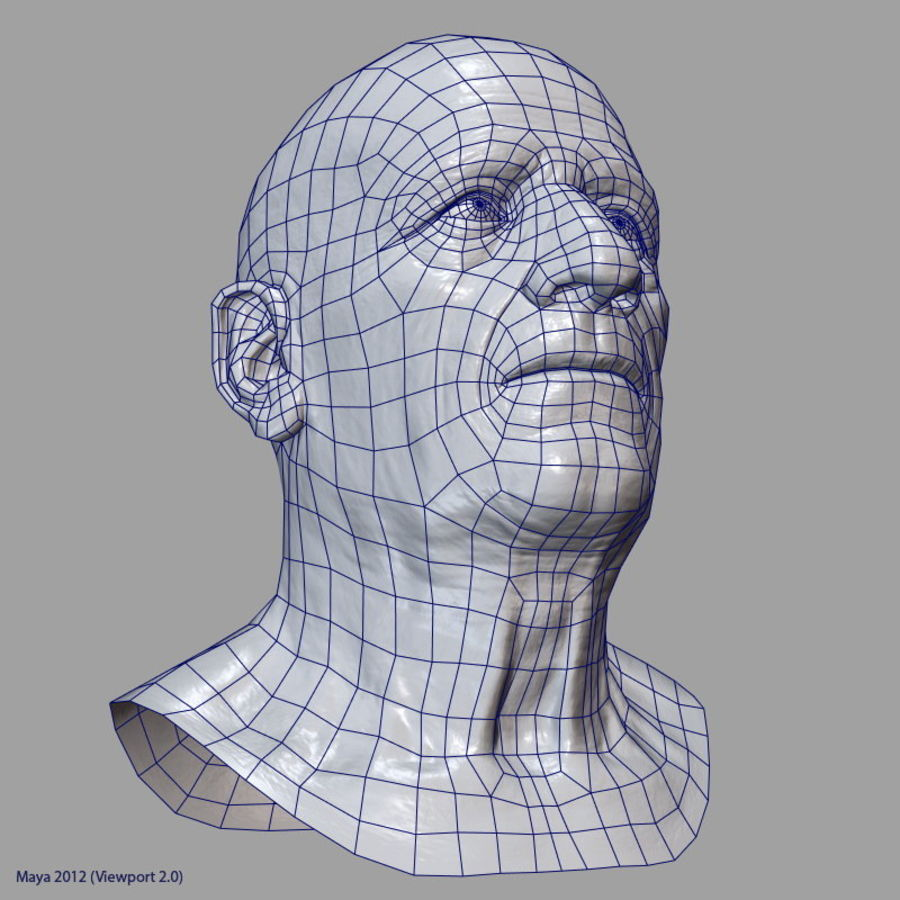 Old Man - Head royalty-free 3d model - Preview no. 31