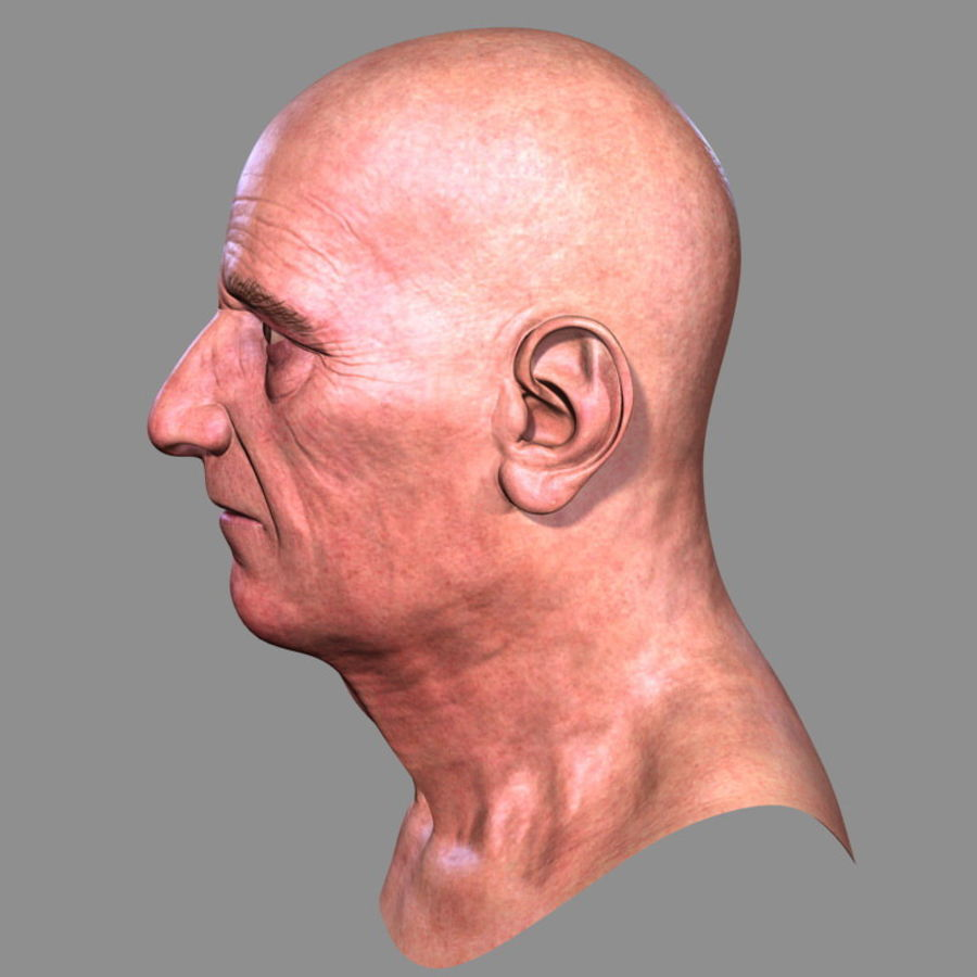 Old Man - Head royalty-free 3d model - Preview no. 6