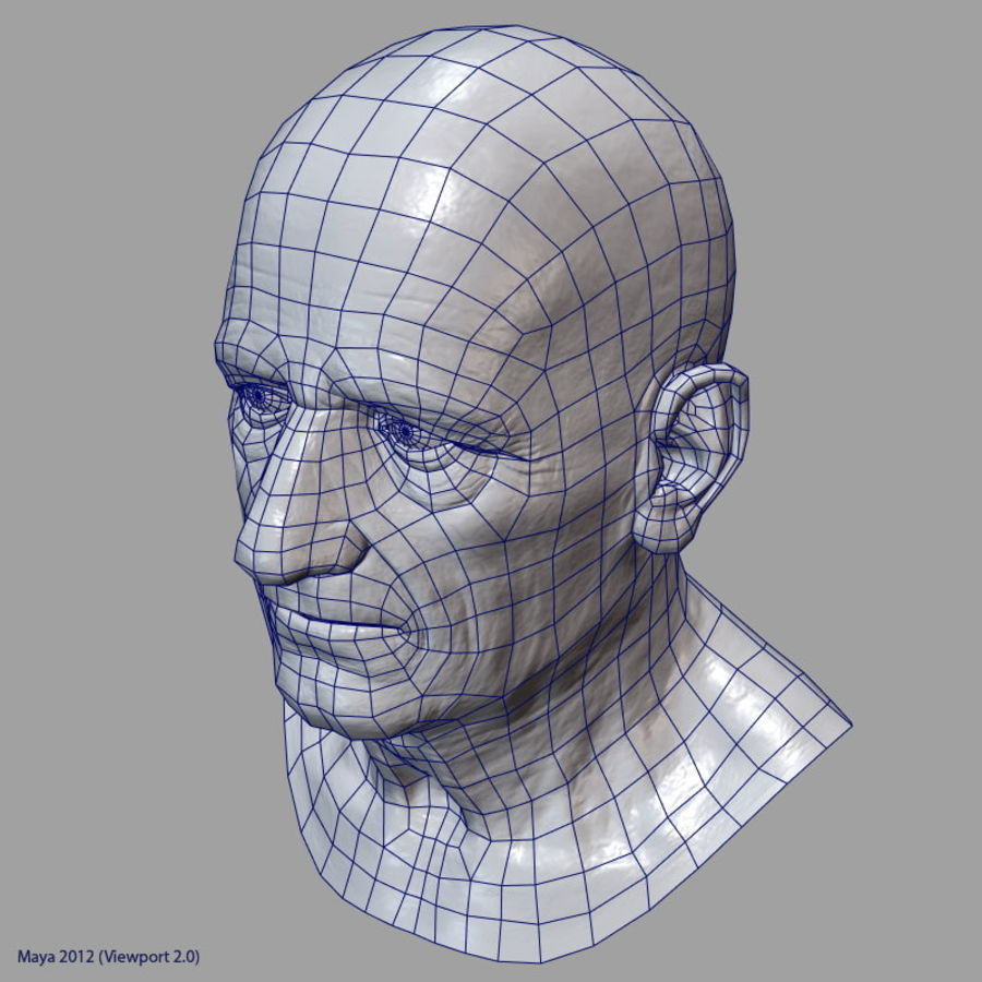 Old Man - Head royalty-free 3d model - Preview no. 30