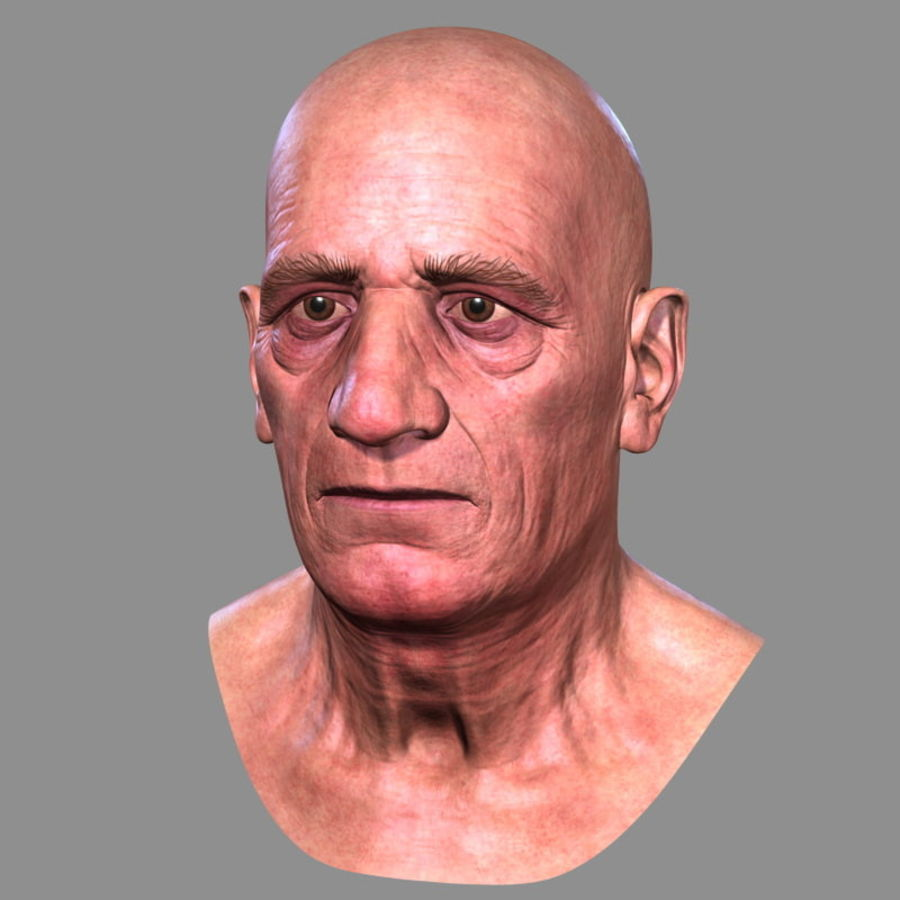 Old Man - Head royalty-free 3d model - Preview no. 4