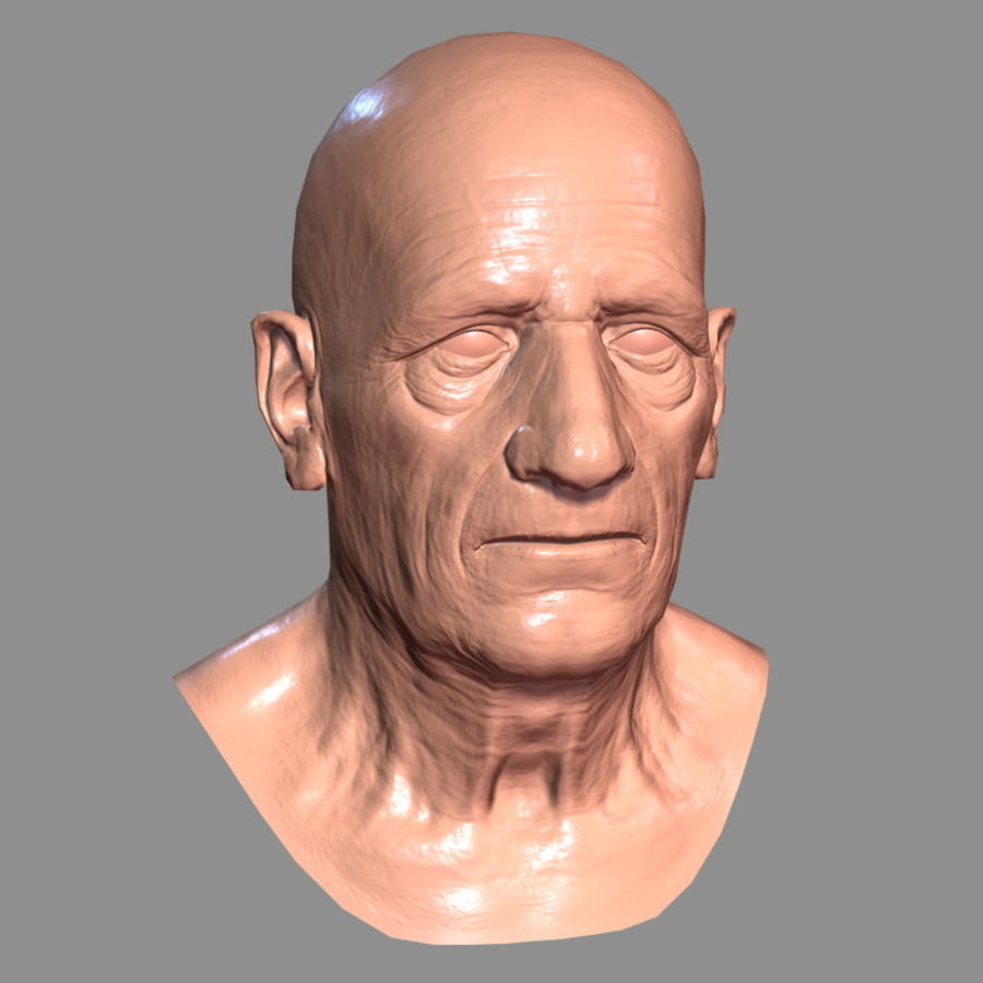 Old Man - Head royalty-free 3d model - Preview no. 18