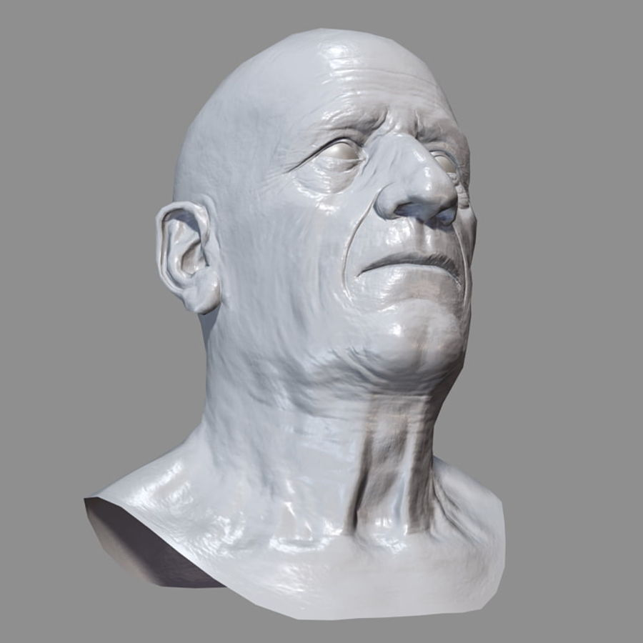 Old Man - Head royalty-free 3d model - Preview no. 25