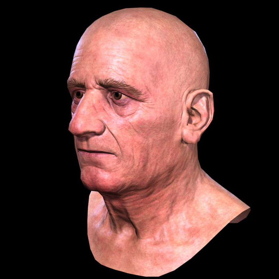 Old Man - Head royalty-free 3d model - Preview no. 13