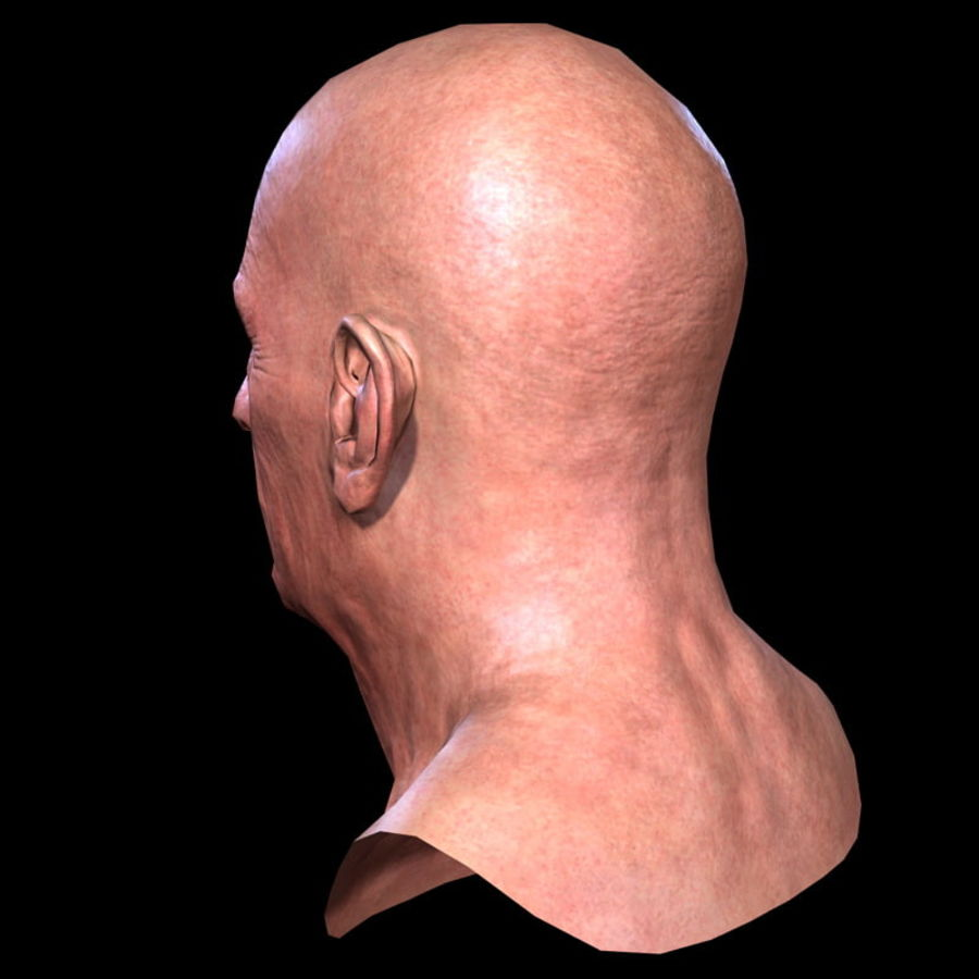 Old Man - Head royalty-free 3d model - Preview no. 15