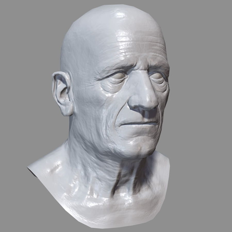 Old Man - Head royalty-free 3d model - Preview no. 21