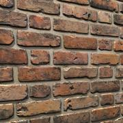 Bricks wall #08 3d model