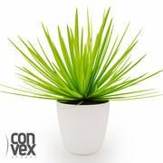 Potted Plants_07 3d model