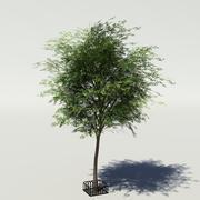 Дерево v3 низкополигональное 3d model
