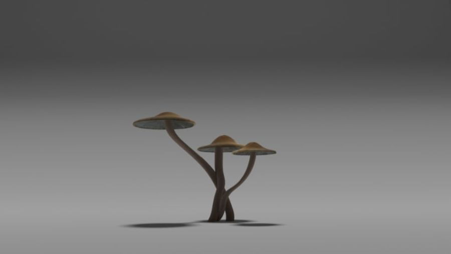 cogumelo royalty-free 3d model - Preview no. 2