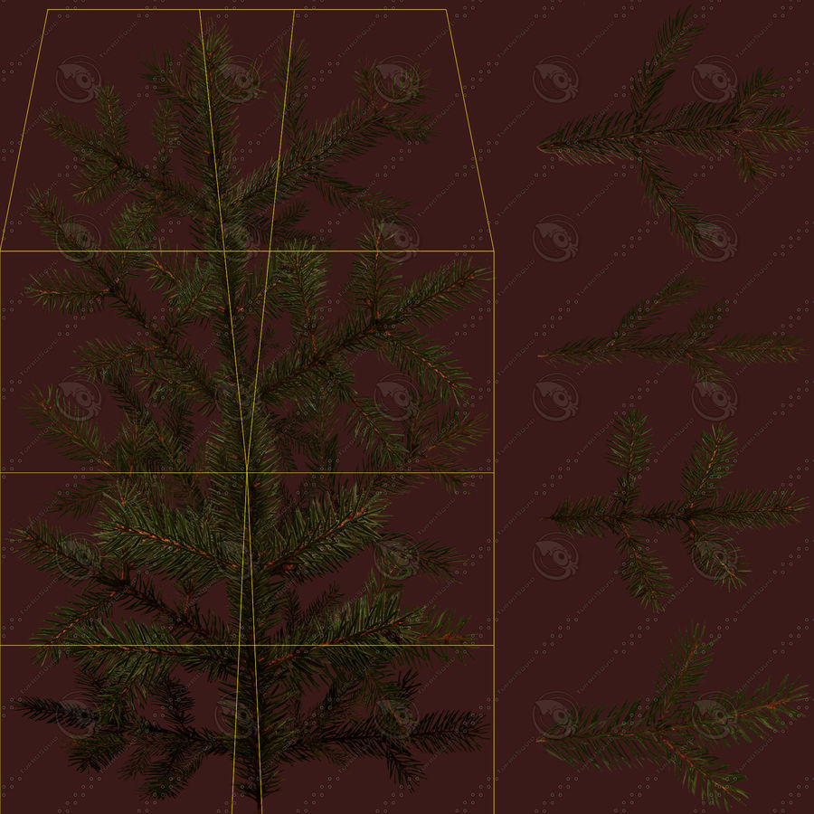 Pine Tree royalty-free 3d model - Preview no. 17