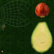 Avokado Set 3d model