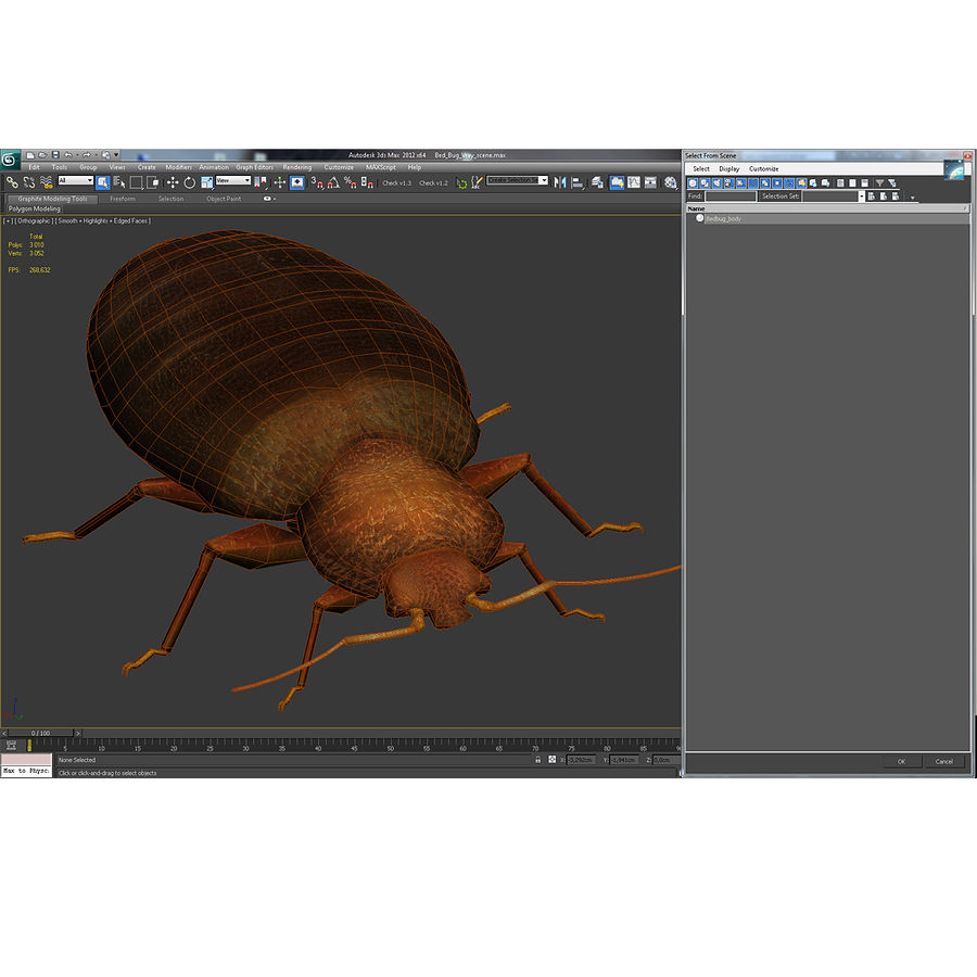 Bed Bug royalty-free 3d model - Preview no. 5