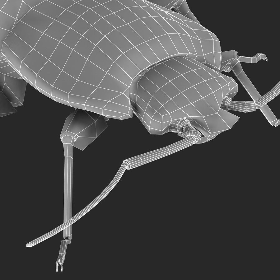 Bed Bug royalty-free 3d model - Preview no. 28