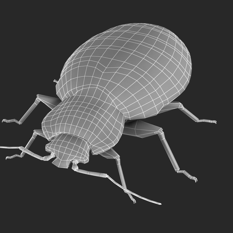 Bed Bug royalty-free 3d model - Preview no. 22