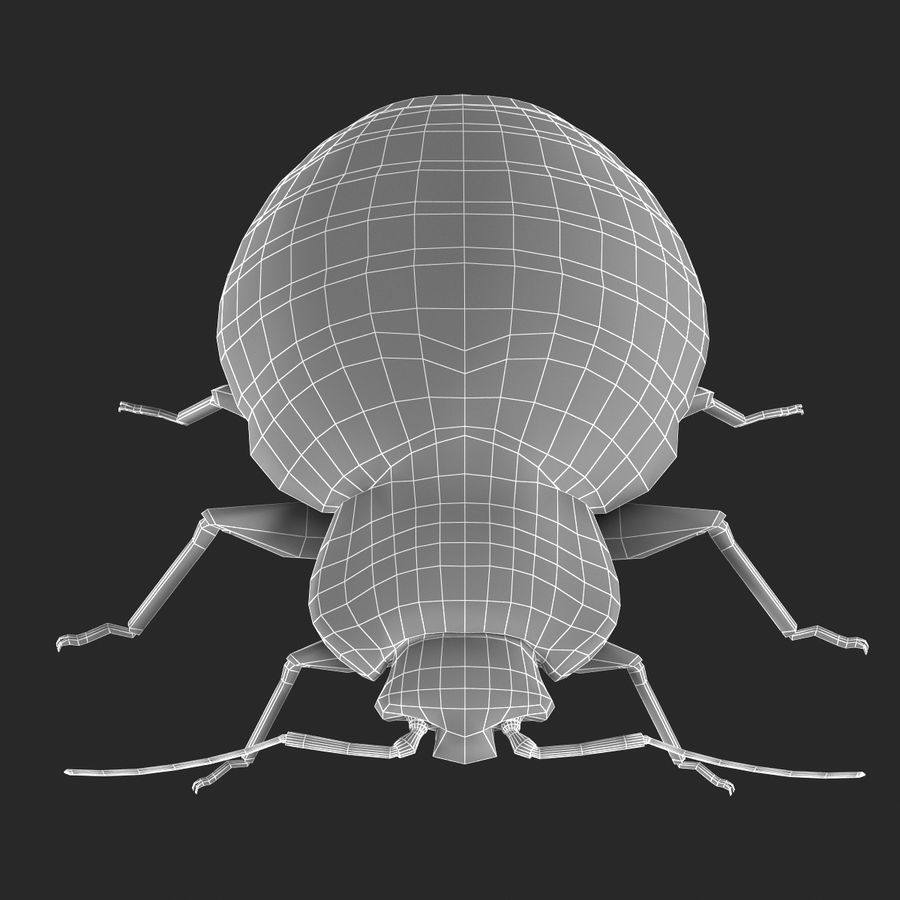 Bed Bug royalty-free 3d model - Preview no. 18