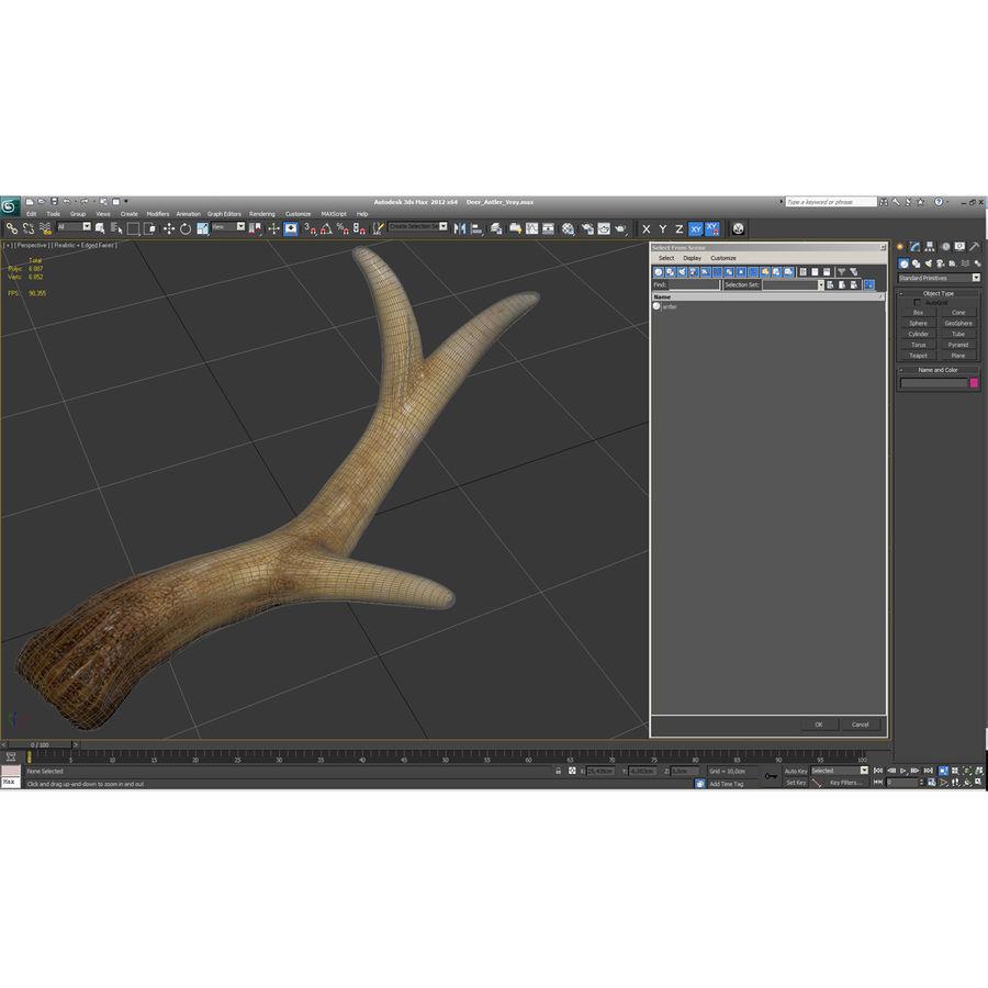 Deer Antler royalty-free 3d model - Preview no. 4