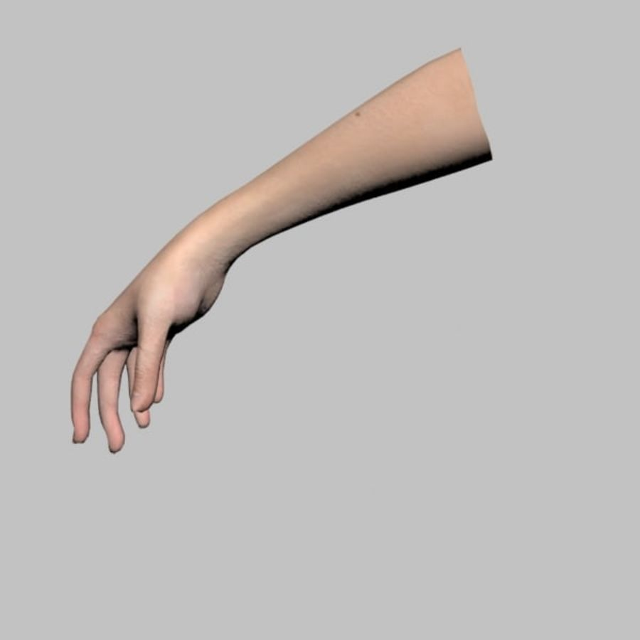 Hand (Female) royalty-free 3d model - Preview no. 9