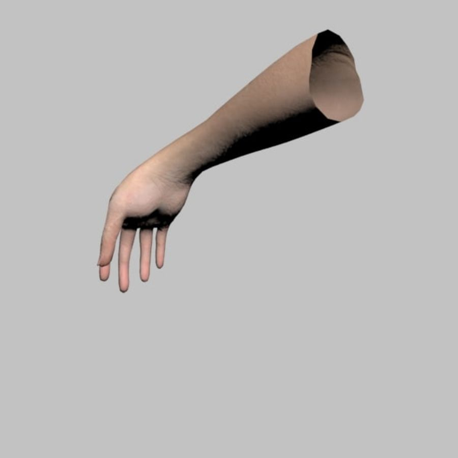 Hand (Female) royalty-free 3d model - Preview no. 8