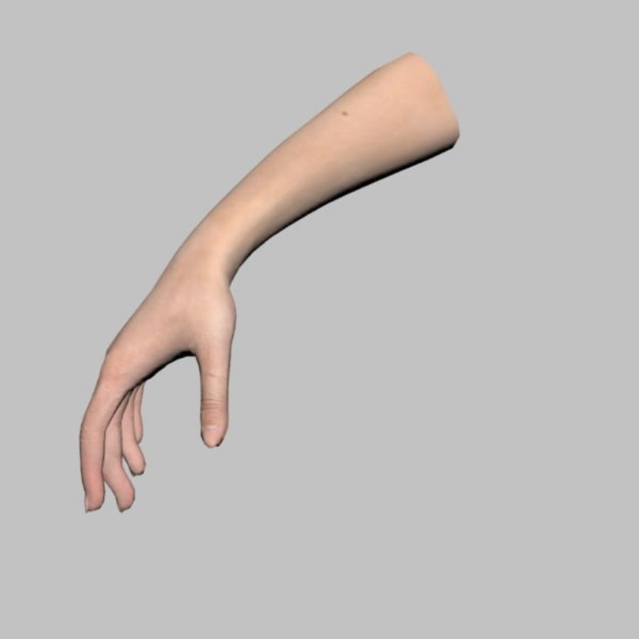 Hand (Female) royalty-free 3d model - Preview no. 10