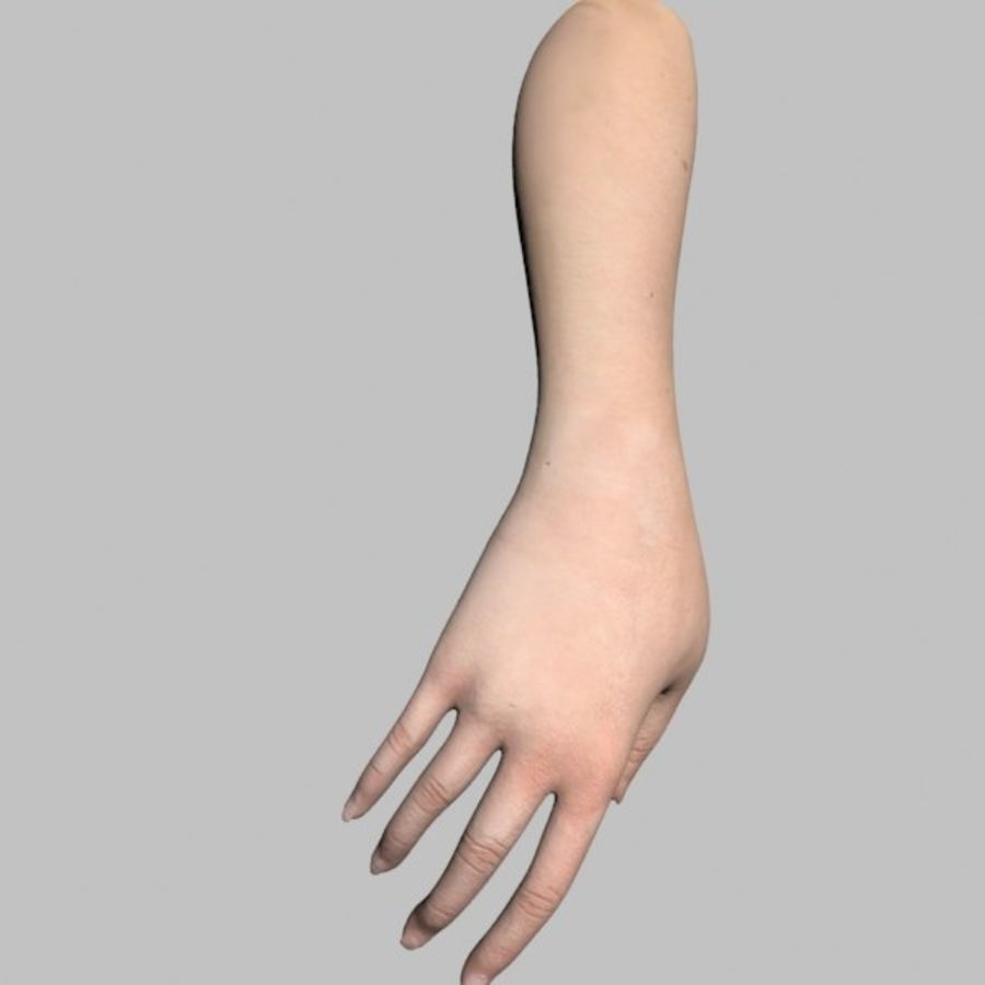 Hand (Female) royalty-free 3d model - Preview no. 12