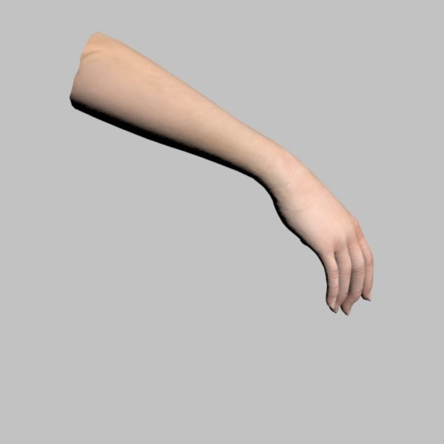 Hand (Female) royalty-free 3d model - Preview no. 4