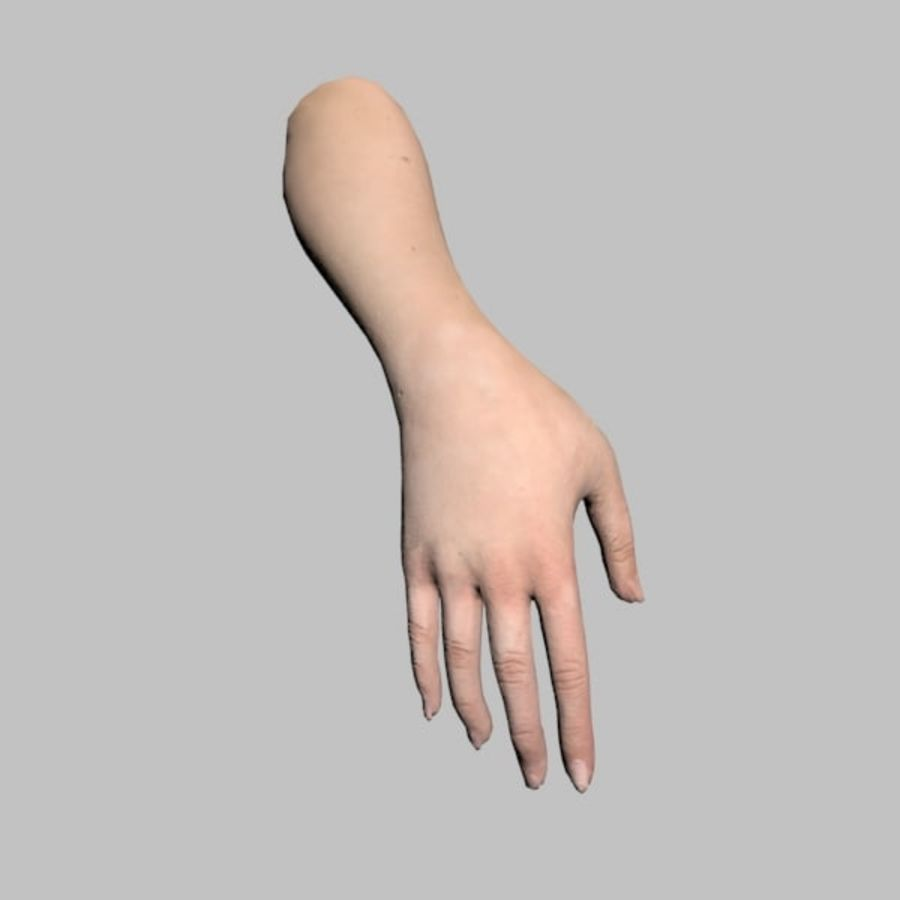 Hand (Female) royalty-free 3d model - Preview no. 2