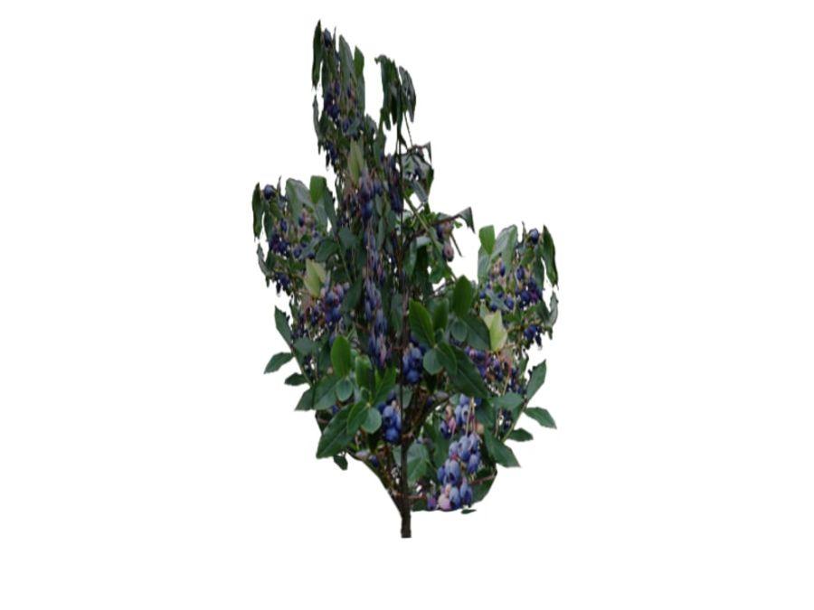buskar prop royalty-free 3d model - Preview no. 4