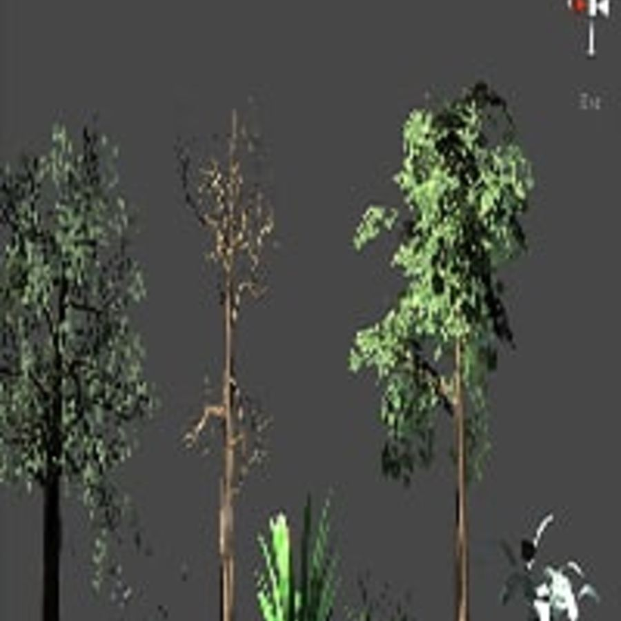 Pakiet drzew leśnych royalty-free 3d model - Preview no. 5