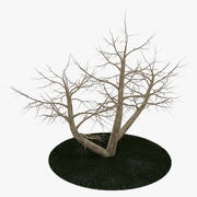 Tree 4 branches 3d model
