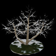 Tree 4 branches snow 3d model