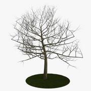 Träd 6 grenar 3d model