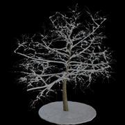Albero 7 rami di neve 3d model