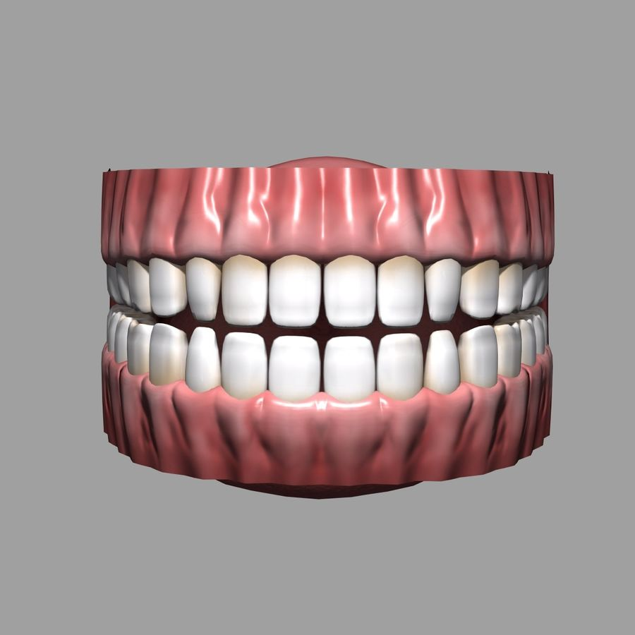 牙齿和牙龈 royalty-free 3d model - Preview no. 5