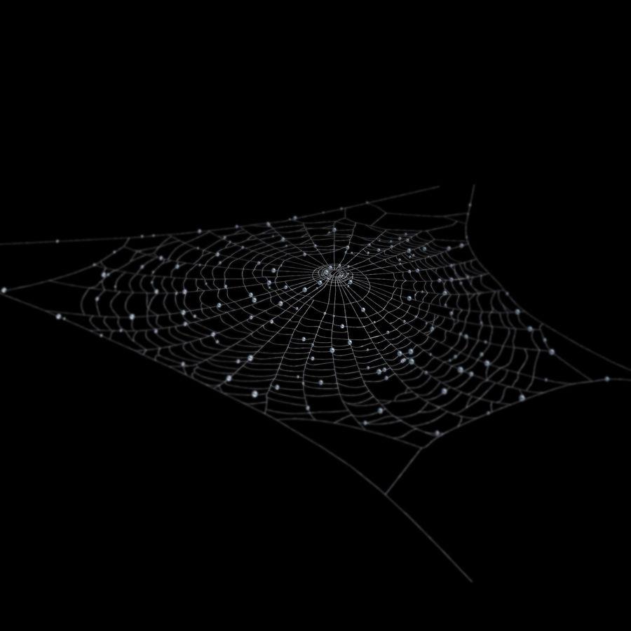 teia de aranha royalty-free 3d model - Preview no. 4
