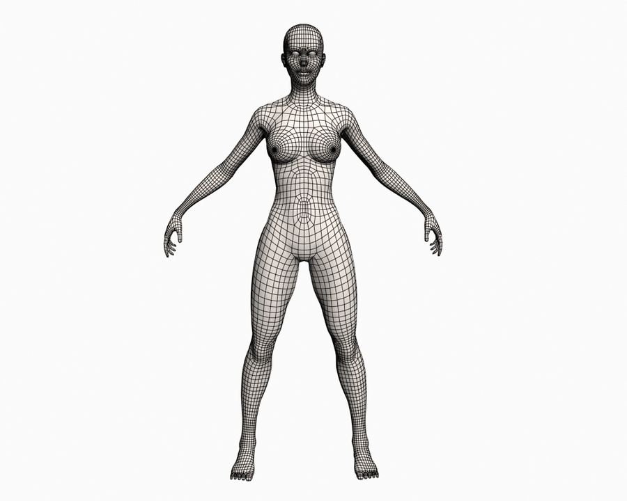 Basic Female royalty-free 3d model - Preview no. 9
