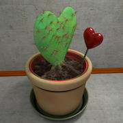 Cactus heart shaped present gift 3d model