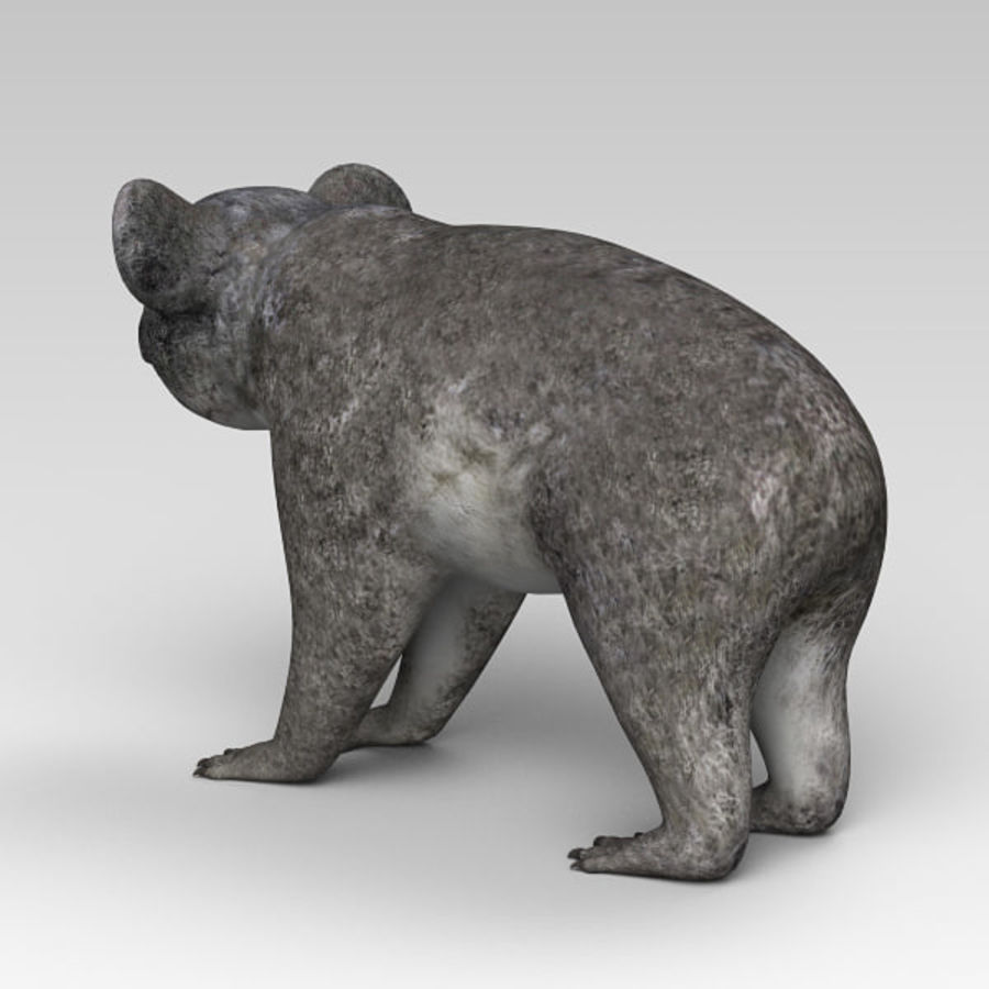 Koala royalty-free 3d model - Preview no. 4