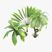 Toon Palms 3d model