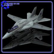 F-14 Tomcat (Poser/ Vue) 3d model