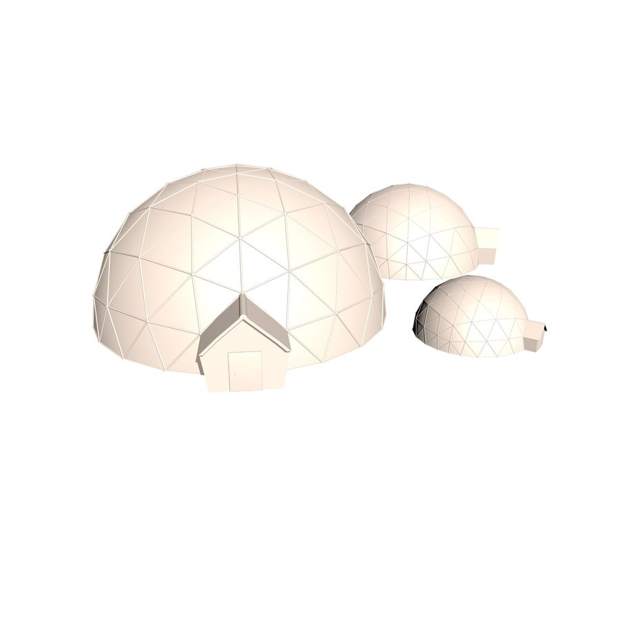 Geodesic Houses royalty-free 3d model - Preview no. 5