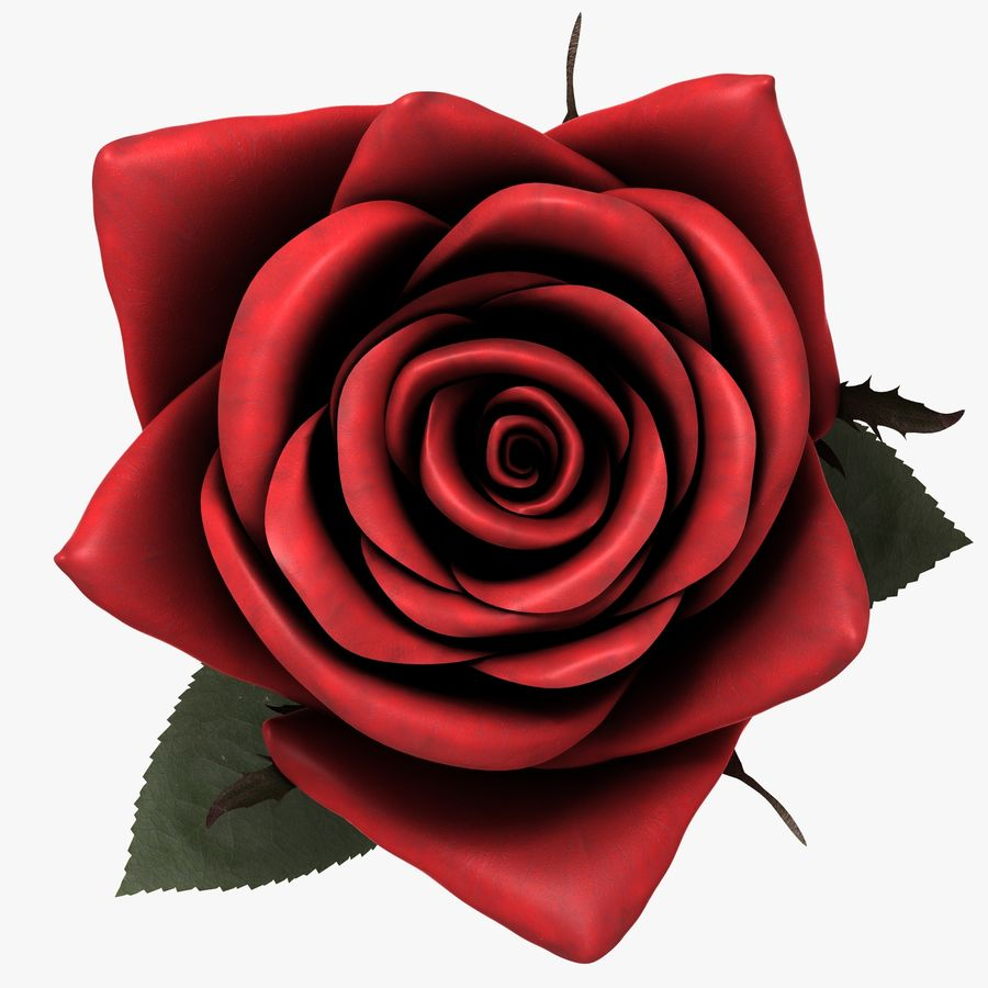 Red Rose royalty-free 3d model - Preview no. 10