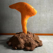 Yellow Mushroom detailed 3d model