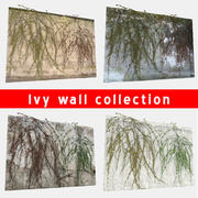 Ivy Wall Collection 3d model